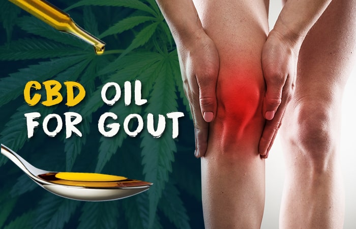 Can CBD oil be effective in gout?