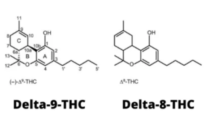 Difference between Delta 8 THC and Delta 9 THC with chemical bonds