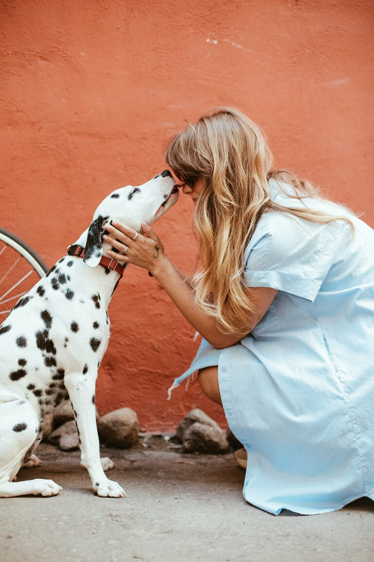 Planning COVID Quarantine With Pets | What to Do