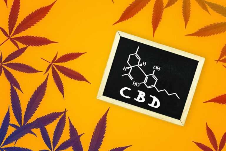 4 Recent Studies That Show the Power of CBD – Medicalweeds