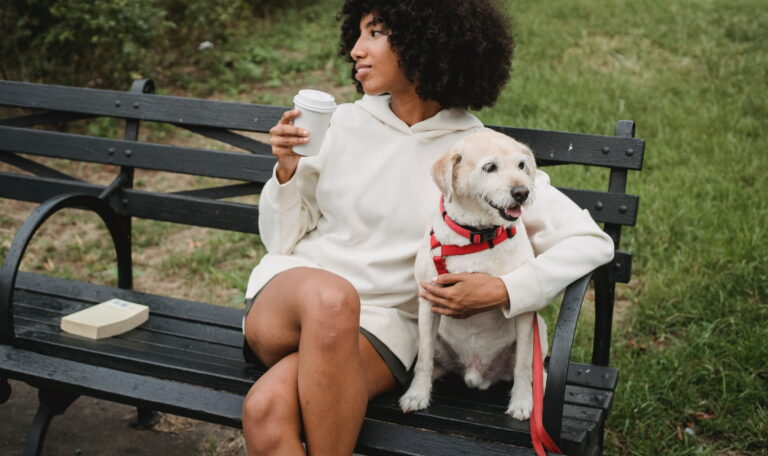 CBD 101: Is there CBD Oil for Dogs?