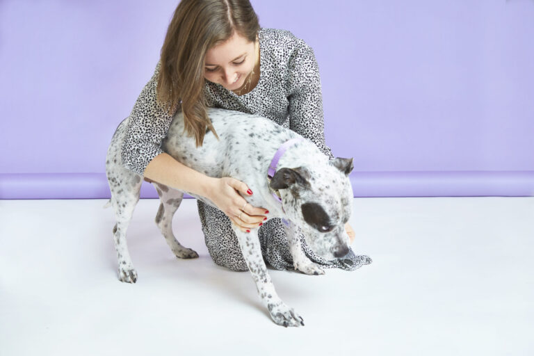 Dog Dandruff: Causes, Prevention and Treatment