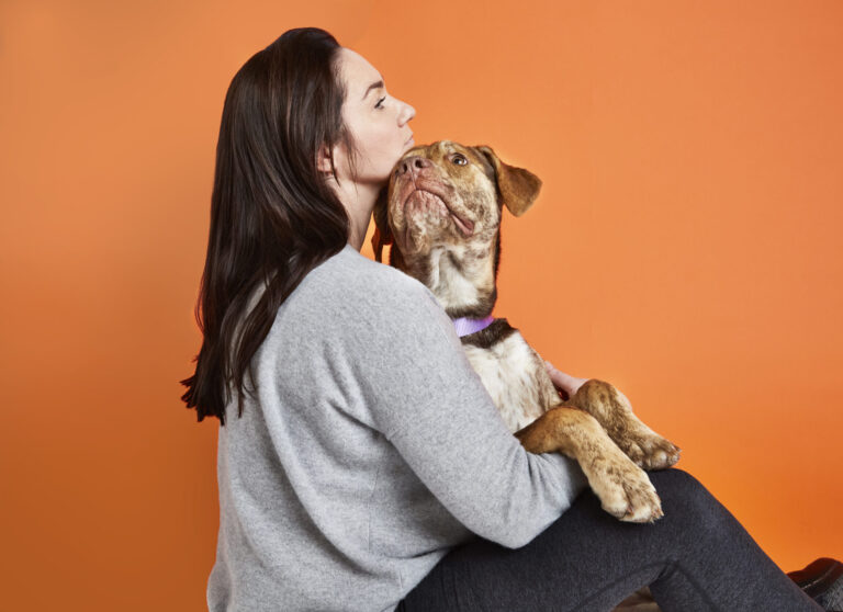 Apoquel for Dogs: How it Works, Benefits, Dosing, and Safety