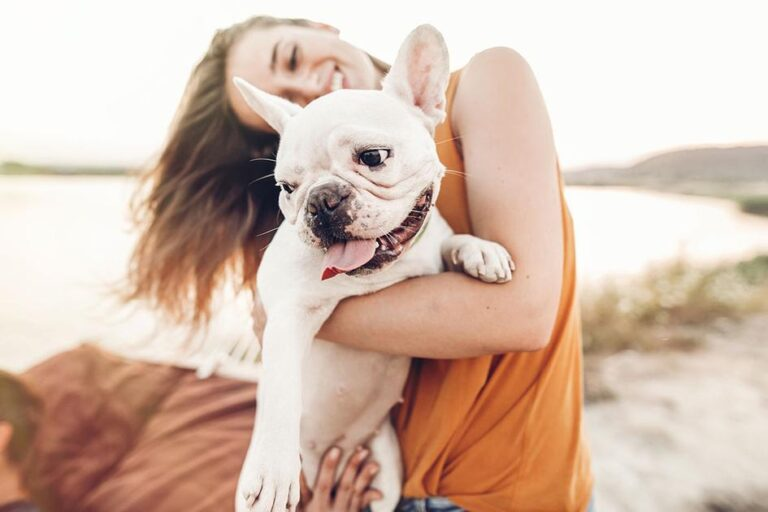 The Benefits of CBD for Your Dog – Medicalweeds