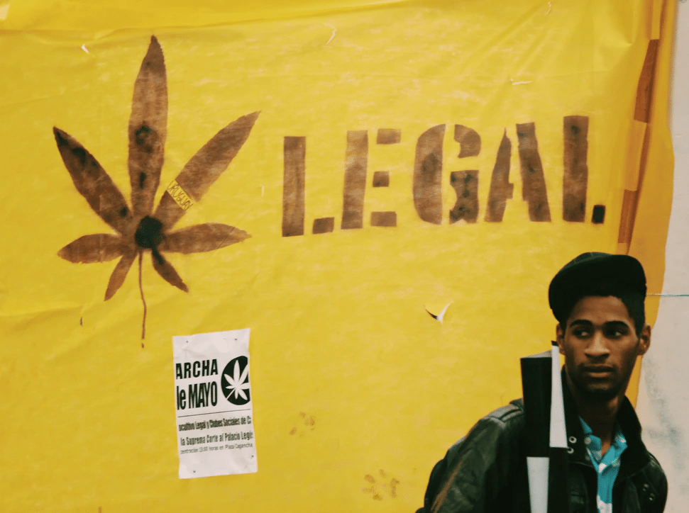 Why Should You Only Buy Weed From a Trusted Dispensary?