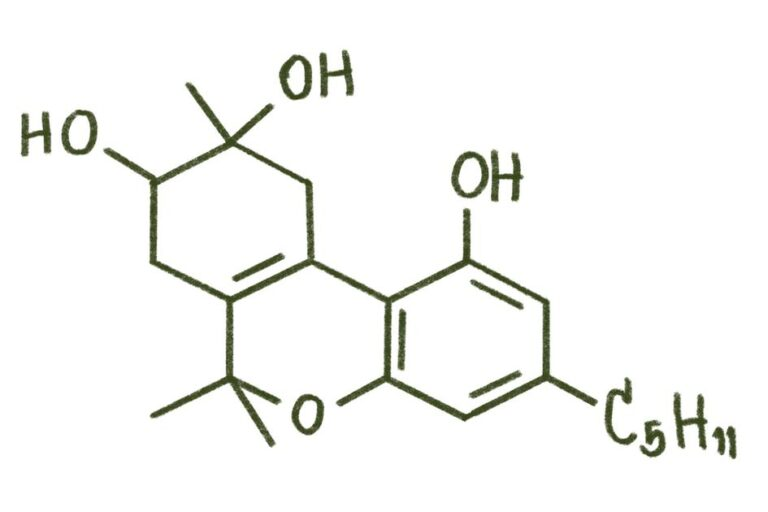Four Things To Know About Delta-8 – Medicalweeds