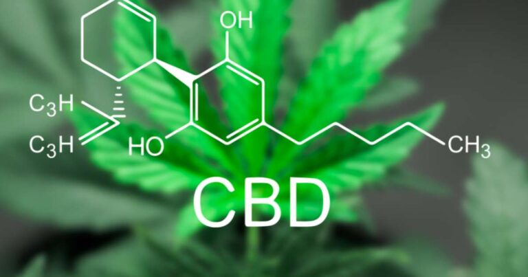 Voyager Life aiming to be the market leader in the fast-expanding UK CBD and hemp products sector
