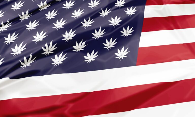 State by State Cannabis Legislation – What's Legal Now and Where? –