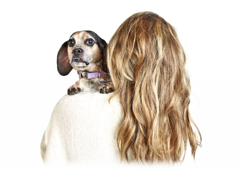 Hearing Loss in Dogs: Why It Happens and Four Ways to Support Your Dog
