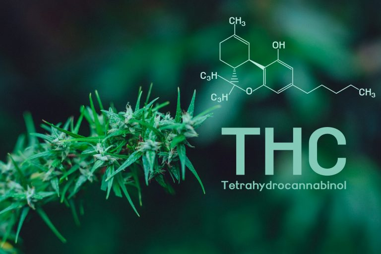 Hemp-Derived THC Products vs Cannabis-Derived THC Products