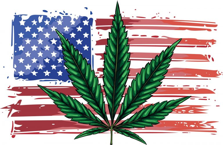American Stoner – Comparing Cannabis Culture in Legal vs Prohibited States