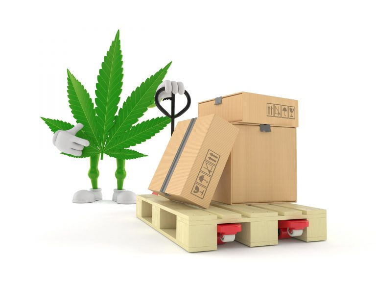Where's It From? The Specifics of Germany's Cannabis Import Market